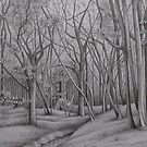Blean woods - an exercise in patience by Susan Hewson