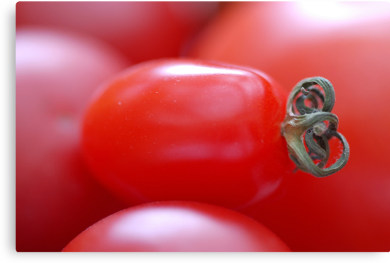 Little Tomato by vbk70