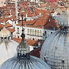 The Rooftops of Venice by Pam Blackstone