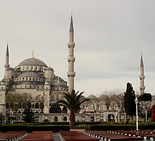 The blue mosque in Istanbul by TimLarge