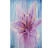 Lily Flower in Purple Photographic Print