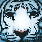 white tiger by artisticfury