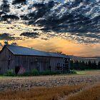 Rural Horizon at Sunset by Mariano57
