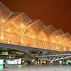 Gare do Oriente. Architecture. Lisbon.  by terezadelpilar~ art & architecture
