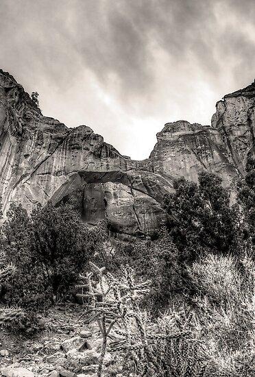 La Ventana Arch by njordphoto