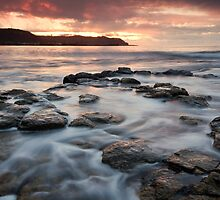 Preservation Point by Patrick Reid