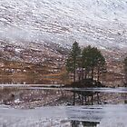 An island with trees on a partially frozen Loch Ossian by AlbertLake