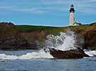 Yaquina Head by Jeff Clark