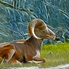 Fracky Ram by Danielle Girouard