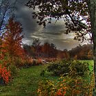 Autumn Magic by Carrie Blackwood