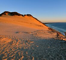 Carlo Sandblow at sunrise. Rainbow Beach, Queensland, Australia (3) by Ralph de Zilva