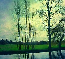River Wey Reflections by Citizen