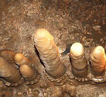 Marakoopa Caves by Jo Ralston