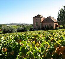 Picardy Winery - Pemberton Region by GMerks