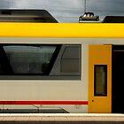 Train, Sweden by Nirmal  Ghosh