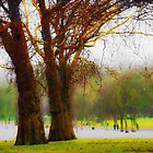 Trees and winter hues by Neophytos