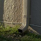 Downspout in the Morning Light by Glenn Cecero