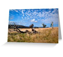 Highlands Country Greeting Card