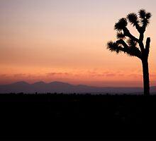 Mojave Native by BarkingGecko