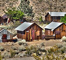 The Living Ghost Town by BarkingGecko