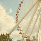 Navy Pier Ferris Wheel by acarpenter