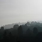 Skyline Silhouette, Sausalito, San Francisco by Jane McDougall