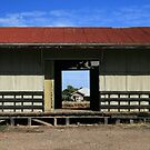 Rainbow Country Rail Shed, Wimmera by Jane McDougall