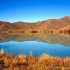 Beautiful Lake Benmore NZ by davamo