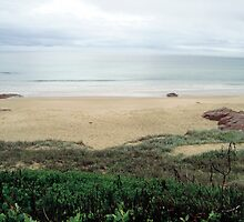 Anna Bay by cassieyoung