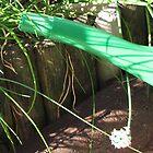 Dainty Chive Flower by ArtOfE