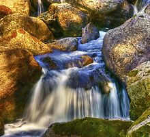 River Flows by Svetlana Sewell