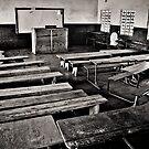 Palmgrove School by Vincent Riedweg