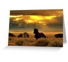 High Desert Gold Greeting Card