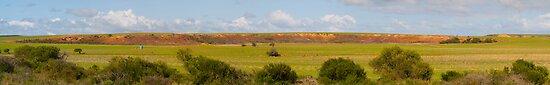 Northhampton Farmlands by Adrian Lord