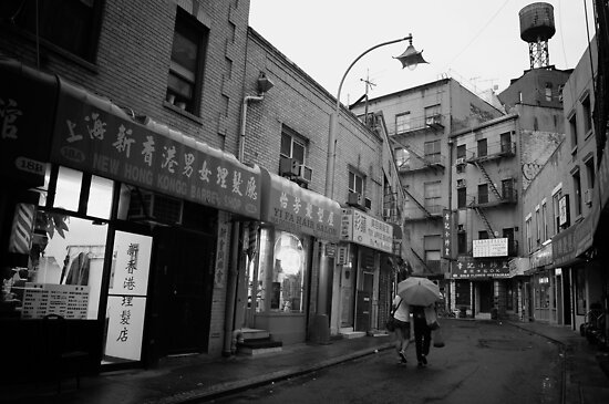 Chinatown in the Rain by Vivienne Gucwa
