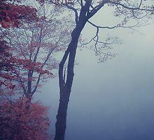 Misty Blue by Aimelle