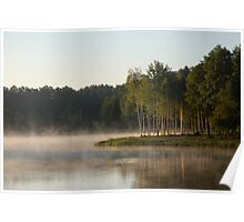 Lake, fog and trees Poster