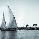 Felucca on Nile by Paul Barralet