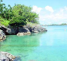Blackwatch Path ,Northshore Bermuda by buddybetsy
