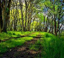 There Are Times  by Charles & Patricia   Harkins ~ Picture Oregon