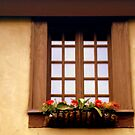 CHATEAU WINDOW ^ by ctheworld