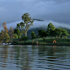 Mist over Lake Moogerah  by Barbara Burkhardt