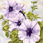 Purple Petunias by Anne Sainz