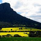 Fields afar... by su2anne