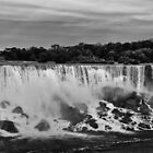 The American Falls by Brad Walsh