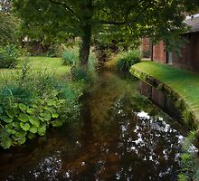 Still Waters Run Deep - Morden Hall Park, London. by DonDavisUK