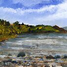 Strangford Lough, Near Greyabbey by Les Sharpe