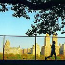 Central Park Runner by Alberto  DeJesus
