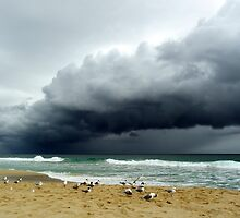 Winter Storms in Western Australia by Angie66