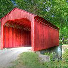 Runions Creek  Covered Bridge by James Brotherton